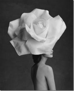 rose had via reasonstobreathe.tumblr_thumb[1]